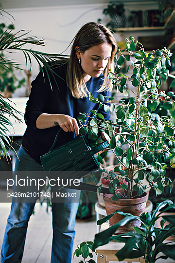 Woman watering potted plant on stool at home - p426m2101742 by Maskot