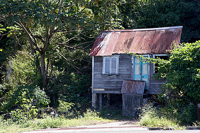 Shack with corrugated metal roof, Grenada, West Indies. - p8552373 by Richard Bryant