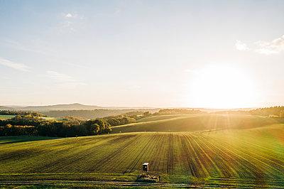 Farmland in the sunshine, Rhineland-Palatinate - p713m2283535 by Florian Kresse