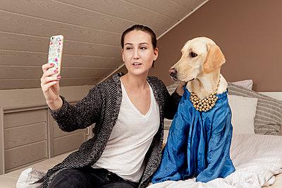 Dog in a dress - p1221m1051653 by Frank Lothar Lange