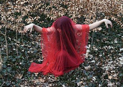 Tanz in rot - p1229m2259630 von noa-mar