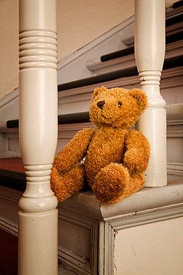 Teddy - p3300241 von Harald Braun