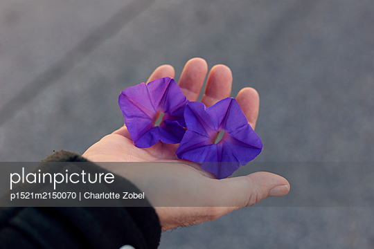 Man hand with flowers - p1521m2150070 by Charlotte Zobel
