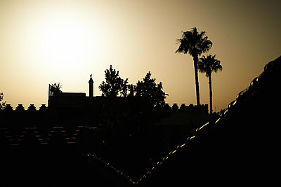 Mosque and palm trees at sunset - p961m1590994 by Mario Monaco
