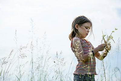 Mädchen bastelt mit Grashalmen und Wildblumen - p1212m1146002 von harry + lidy