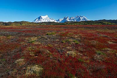 Torres del Paine - p719m883187 von Rudi Sebastian