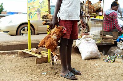 Africa, Uganda, Kampala, Market - p1167m2283469 by Maria Schiffer