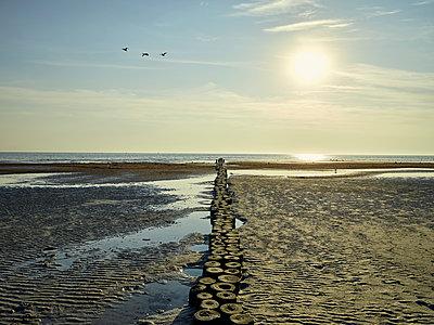 Sonnenaufgang am Strand mit Buhne - p1200m1131555 von Carsten Görling