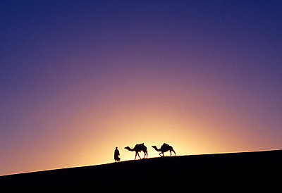 Nomad - p6520508 by Mark Hannaford