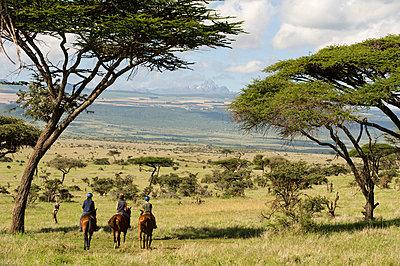 Horse riding during a family safari at Lewa Downs - p6521165 by John Warburton-Lee
