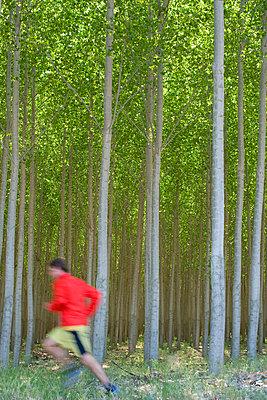 p1424m1501753 von Woods Wheatcroft