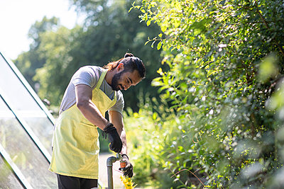 Bearded young man working in garden - p300m2121875 von Sigrid Gombert