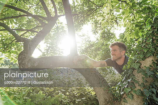 Curious man climbing on tree during sunny day - p300m2277018 by Gustafsson