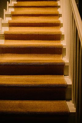 Stair with stair runner - p1621m2263996 by Anke Doerschlen