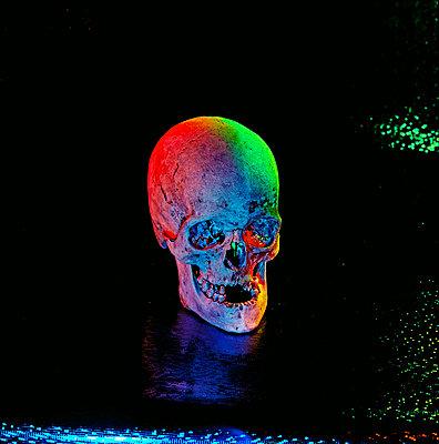 Skull in scary light - p567m720722 by Sandrine Agosti Navarri