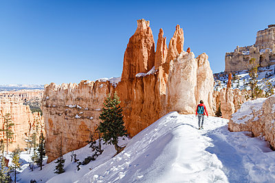 Rear view of hiker walking on snow covered mountain at Bryce Canyon National Park - p1166m1414733 by Cavan Images
