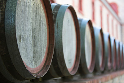 Wine barrels in cellar - p301m926842f by Caspar Benson