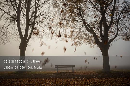 Bank im Nebel - p305m1091380 von Dirk Morla
