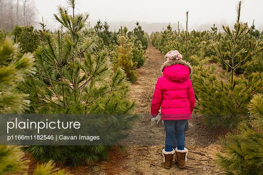 p1166m1182546 von Cavan Images