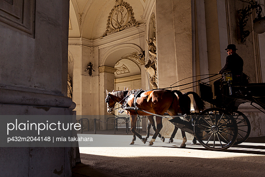 Pferdekutsche in Wien - p432m2044148 von mia takahara