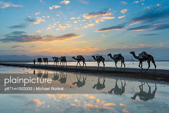 p871m1523333 von Michael Runkel