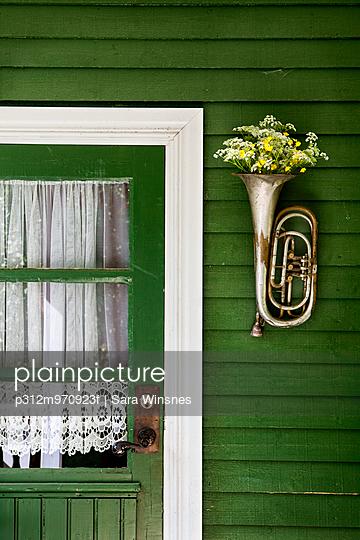Flowers in trumpet