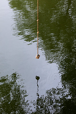 Rope swing hanging over  river - p1057m1564454 by Stephen Shepherd