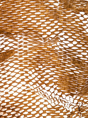 Packing paper with perforated structure - p401m2168392 by Frank Baquet