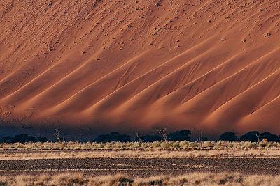 Namib - p1065m885968 von KNSY Bande