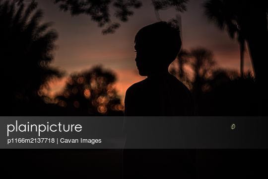 p1166m2137718 von Cavan Images
