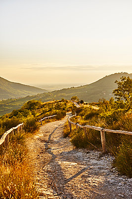 Italy, Path at sunset in the Euganean Hills  - p1312m2156122 by Axel Killian