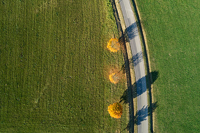 Germany, Bavaria, Drone view of rway maples(Acerplataides)growing beside country road in autumn - p300m2199465 by Martin Rügner