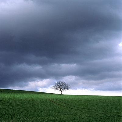 Stormy sky - p813m778791 by B.Jaubert