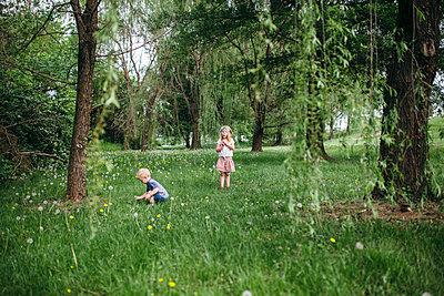 Natur - p1238m1452159 von Amanda Voelker