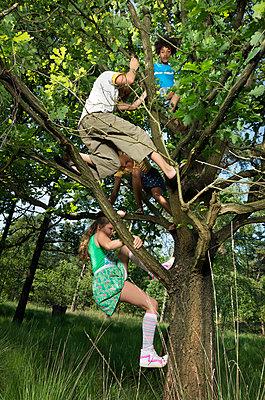 kids play in the woods - p1132m1152745 by Mischa Keijser