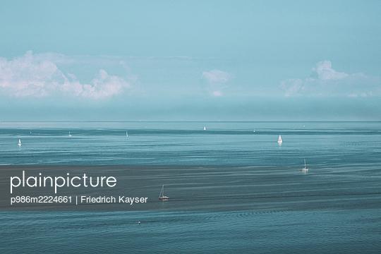 p986m2224661 by Friedrich Kayser
