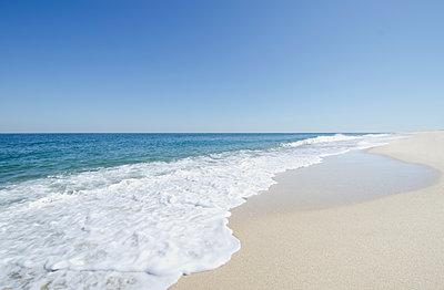 Beach under blue sky - p1427m2186448 by Chris Hackett