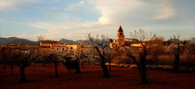 Mallorca - p5600017 by Dave Keightley