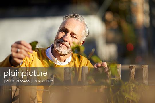 Portrait of mature man looking at plant - p300m2166463 von Jo Kirchherr
