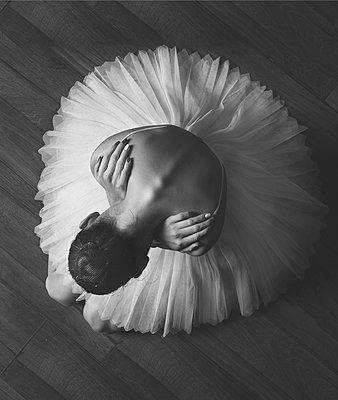 p1476m2026978 by Yulia Artemyeva
