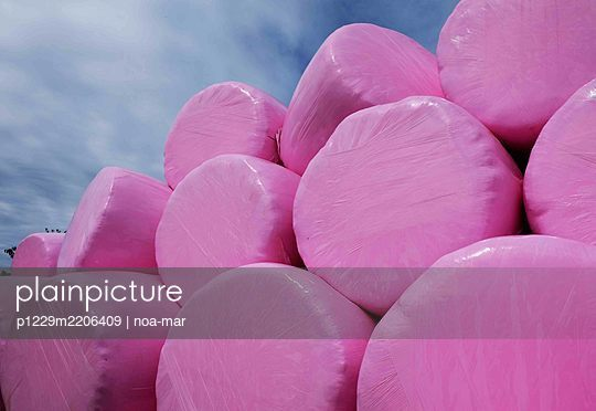 Hay bales in pink coloured foil - p1229m2206409 by noa-mar