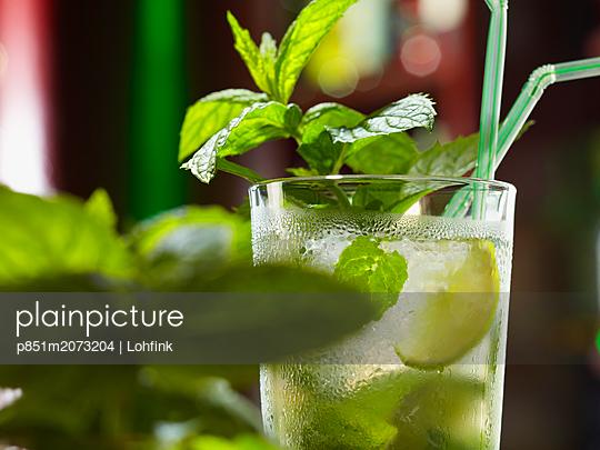 Beverage with mint - p851m2073204 by Lohfink