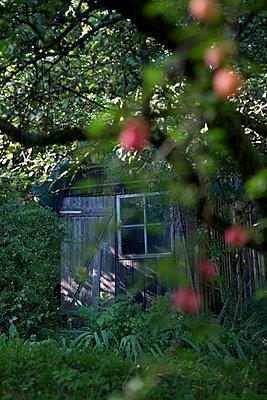 Spooky hut - p454m1177028 by Lubitz + Dorner