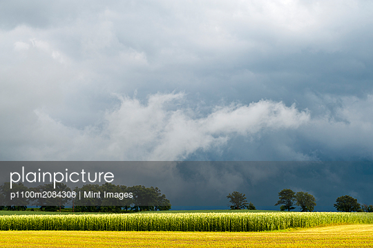 Storm clouds over rural landscape,NA, Iowa, USA - p1100m2084308 by Mint Images