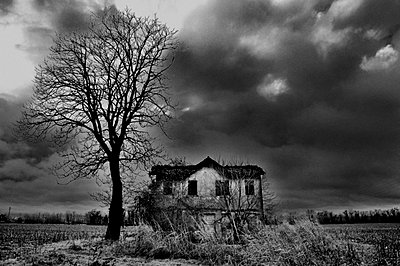 Atmospheric shot of an old house and tree beneath a stormy sky - p3314013 by Thomas Ortolan