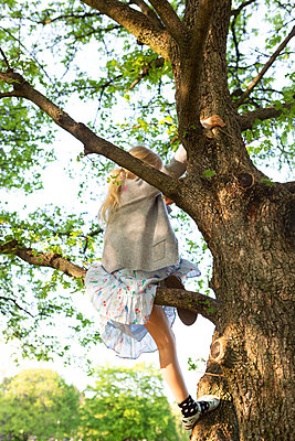 Climbing a tree - p454m2192407 by Lubitz + Dorner