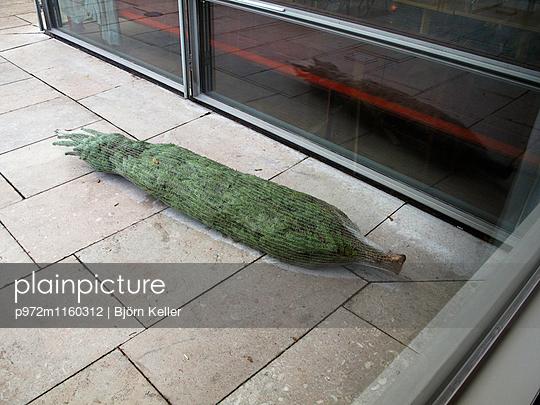 Weihnachtsbaum im Netz - p972m1160312 von Björn Keller