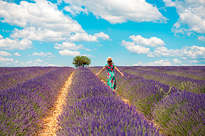 France, Provence, Valensole plateau, back view of woman standing among lavender fields in summer - p300m2070405 by Gemma Ferrando