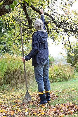 Autumn gardening - p454m764396 by Lubitz + Dorner