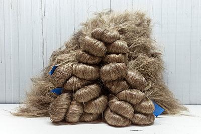 Flax fibre - p915m2022185 by Michel Monteaux